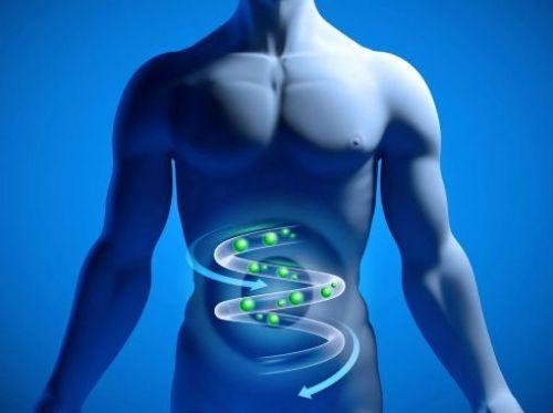 Образование газов в кишечнике