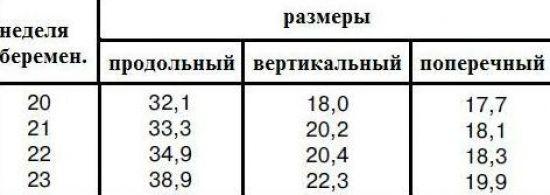 Размеры печени плода на 22 неделе беременности