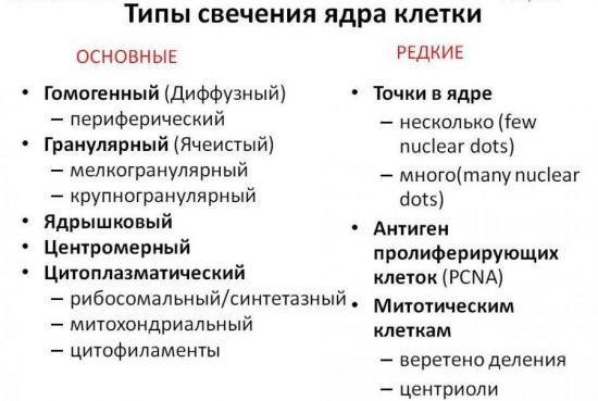 Типы свечения ядра в клетке