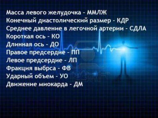 Сокращения для эхокардиографии