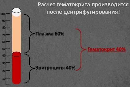 Расчет гематокрита
