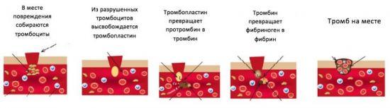 Процесс коагуляции