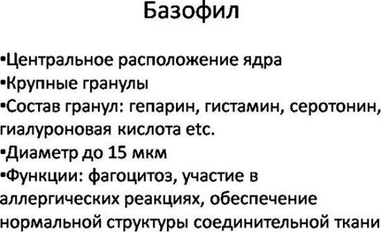 Базофилы