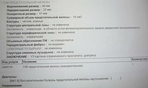 Протокол трансректального УЗИ