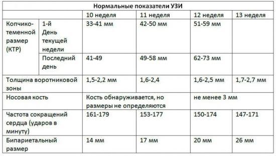 Нормы УЗИ на 13 неделе беременности