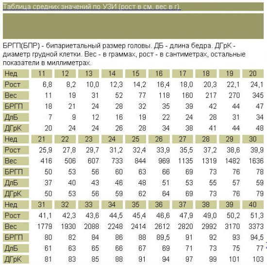 Показатели УЗИ на 16 неделе