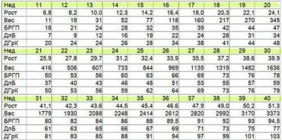 Таблица норм при беременности
