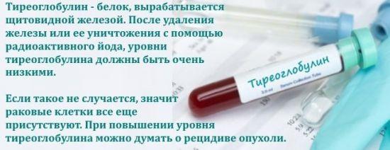 Тиреоглобулин