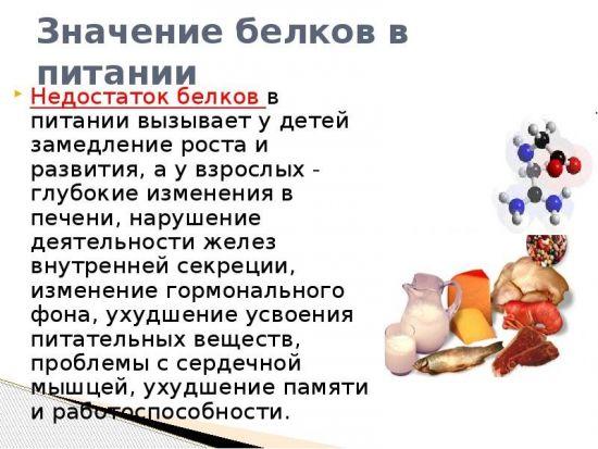 Значение белков в питании