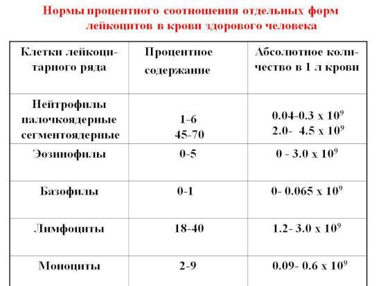 Формы лейкоцитов