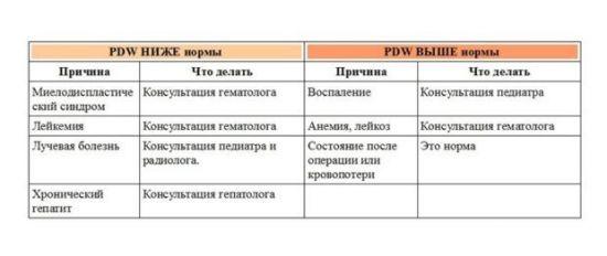 PDW в крови