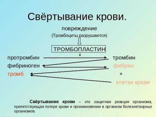 Система свертывания крови