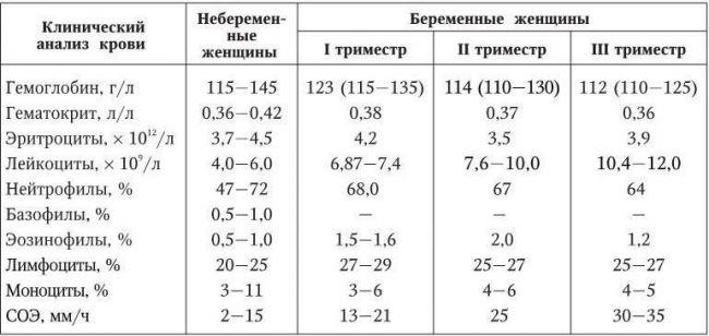 Нормы эритроцитов в крови у беременных