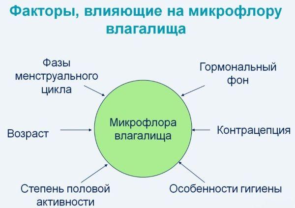 Что влияет на микрофлору влагалища