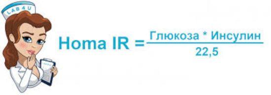 Формула индекса инсулинорезистентности