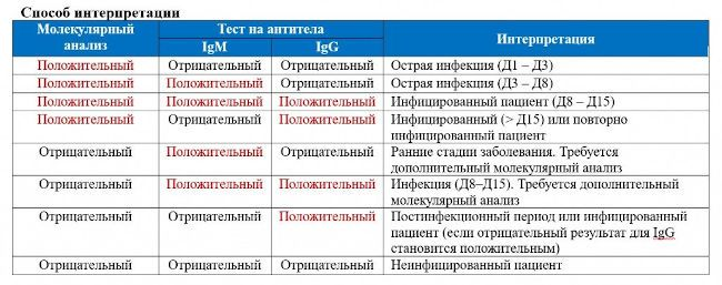 Расшифровка анализов на коронавирус