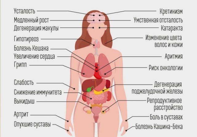 Недостаток селена в организме