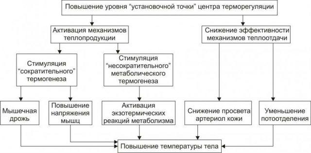 Механизм повышения температуры