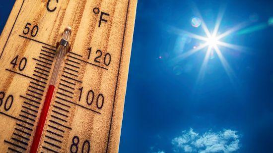 Сорок градусов жары