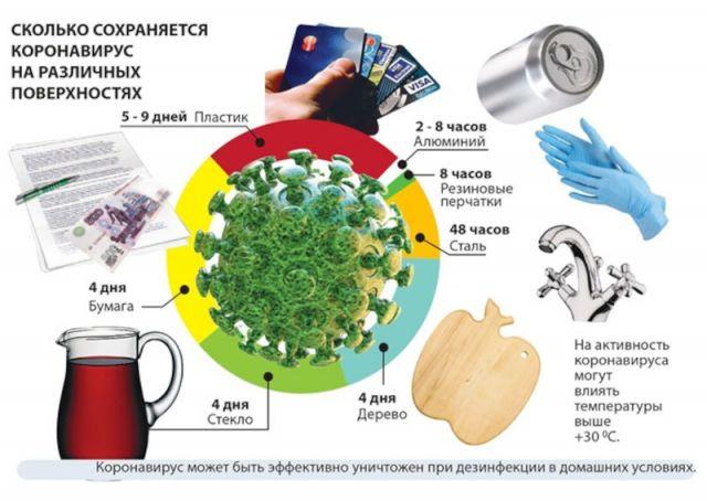 Выживаемость коронавируса на предметах