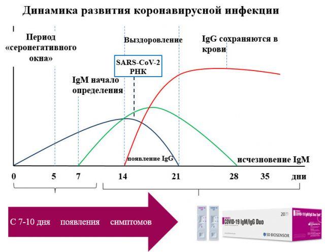 Динамика развития коронавируса