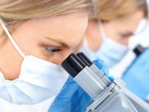 Изучение ткани под микроскопом