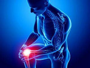 МРТ коленного сустава: что показывает магнитно-резонансная томография колена, как проходит, видео