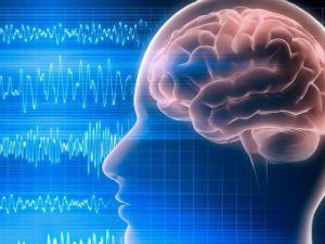 ЭЭГ головного мозга