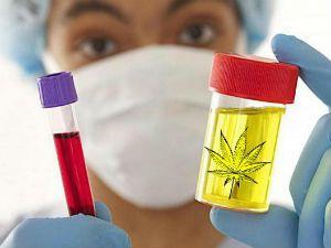 Анализы на наркозависимость