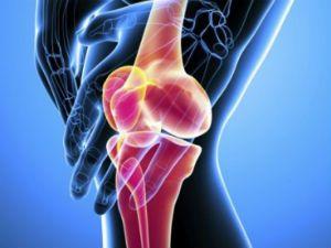 Изображение - Узи коленного сустава как проводится uzkolen-sustava