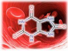 Мочевая кислота в крови